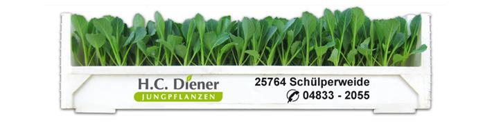 Kräftige Pflanzen